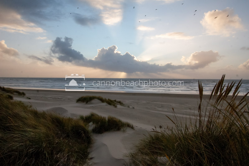Dunes and Cloud Rays
