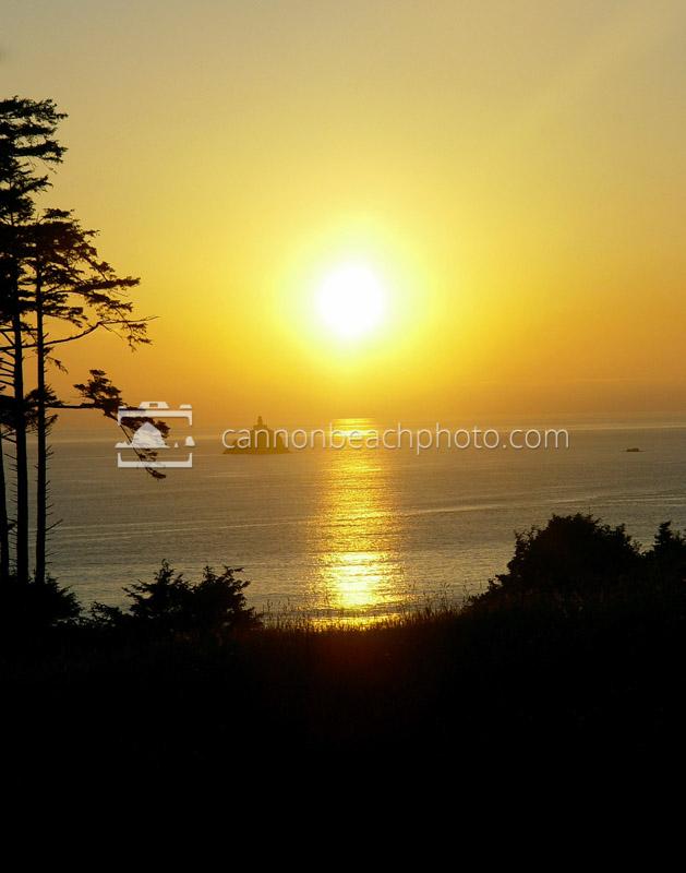 Golden Light Over Tillamook Lighthouse