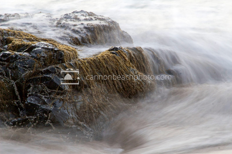 Incoming Waves and Seaweed Covered Rocks