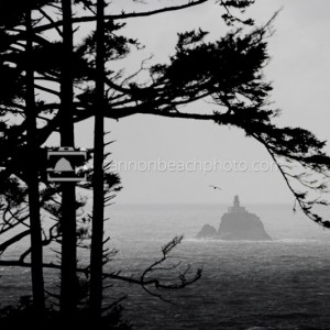 Moody Tillamook Lighthouse