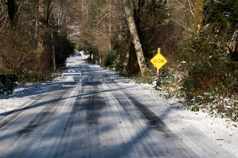 Snow on Ecola State Park Road