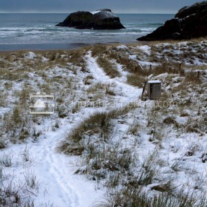 Snow on the Dune Path to Murre Rocks