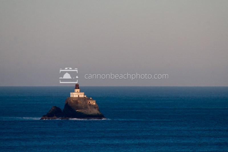 Tillamook Lighthouse Golden Morning