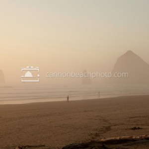 Golden Fog and Haystack Rock