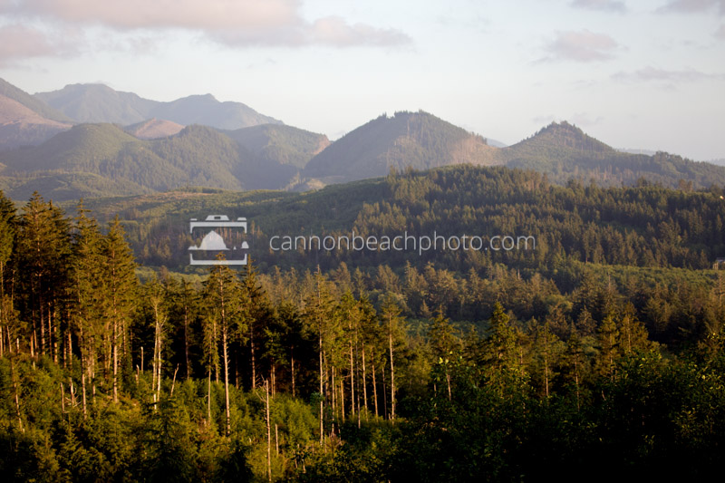 Hills North of Cannon Beach