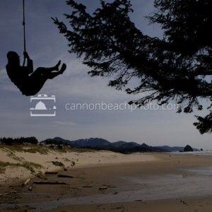 Rope Swing at Chapman Beach