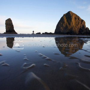 Sunrise Light on Haystack Rock