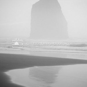 Oregon Coast Seastack Reflected in Black and White