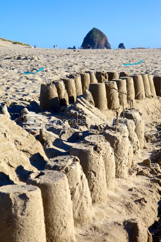 Beach Sandcastle Vertical Image