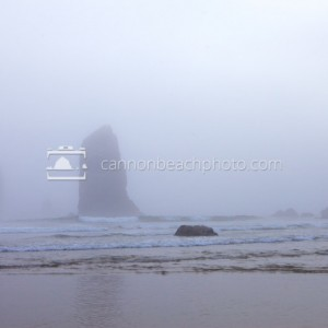 Needles in Blue Fog