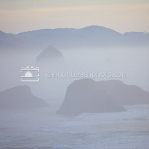 Cannon Beach Thru the Fog, Ecola State Park