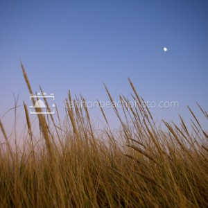 Dune and Moon, Dunes Photography