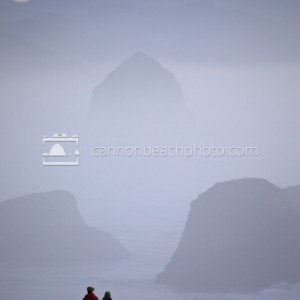 Misty view of Cannon Beach from Ecola State Park