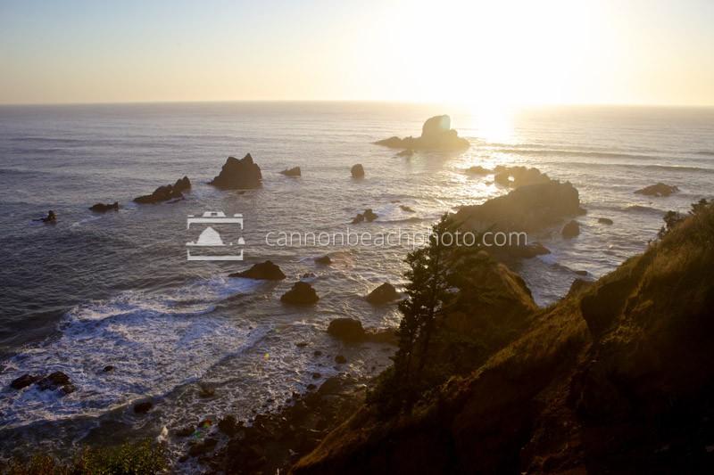 Sea Lion Rocks Golden Glow