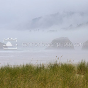 Beautiful Beach Scene, Cannon Beach, Oregon Coast