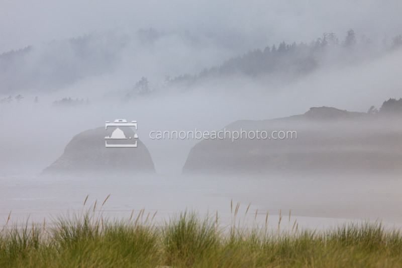 Fog hangs low though Ecola State Park and Cannon Beach, making the rocks and headlands disappear into the distance.