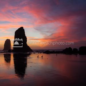 Best Oregon Coast Sunset, Pacific Northwest Seascape