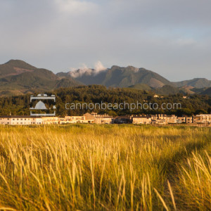 Cannon Beach Hills, Golden Light, Dune Grass, Horizontal