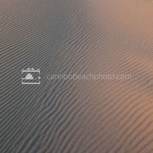 Curve of Sand Dune