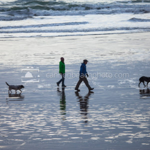 Dog Walk, Oregon Coast Beach