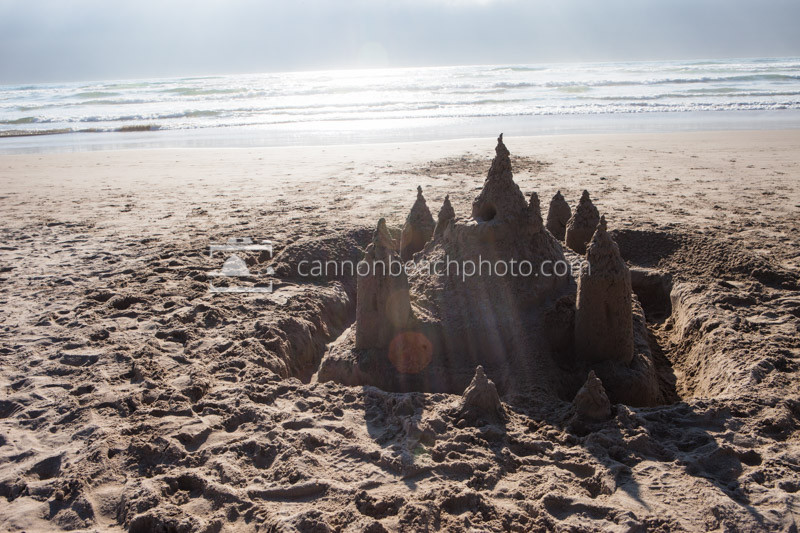 Sandcastle in the Sunshine