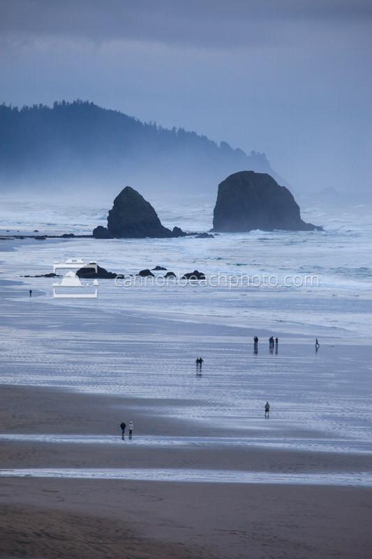 Silver Point Overcast, Oregon Coast Vertical