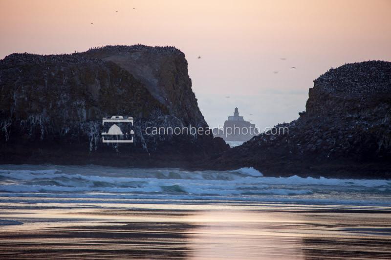 Tillamook Lighthouse Thru Murre Rocks