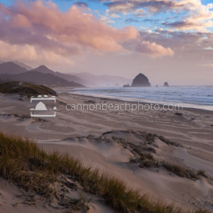 Wind Blown Dunes at Sunset, Oregon Coast