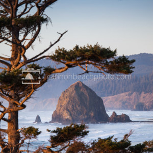 Golden Haystack Rock Framed Vertical