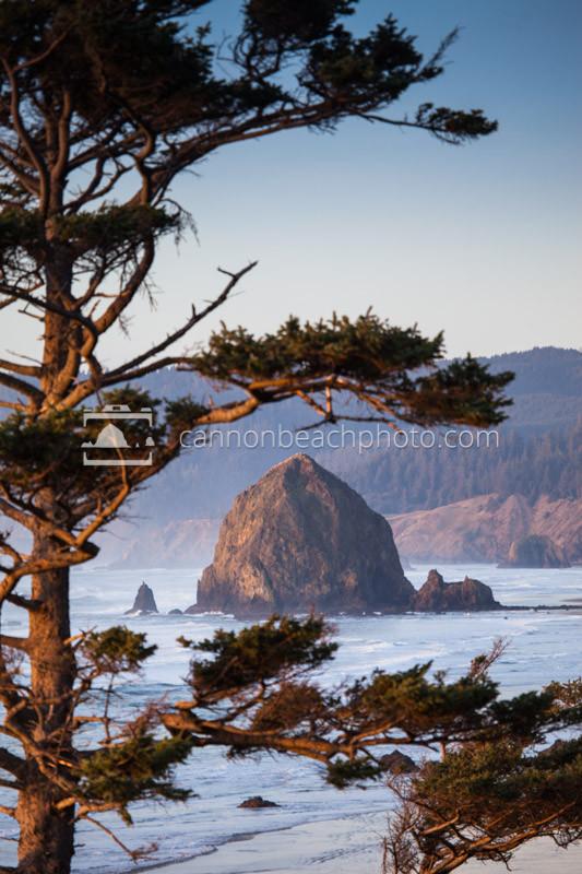 Golden Haystack Rock Framed Vertical