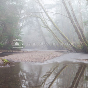 Ecola Creek in the Fog - Horizontal