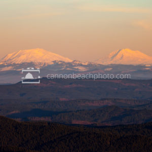 Mt St Helens and Mt Adams at Sunset from Saddle Mountain