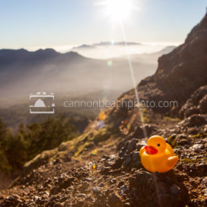 Rubber Ducky Mountain Appearance