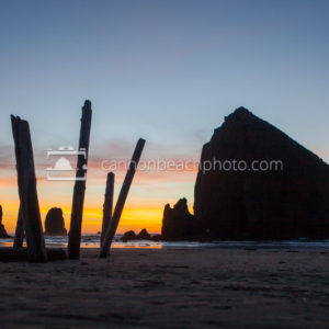 Driftwood Art and Haystack Rock