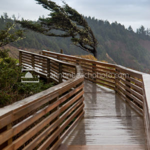 Ecola Point Boardwalk