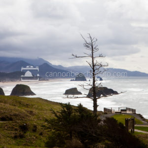 Ecola State Park in Early Spring