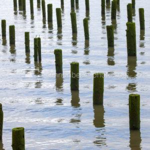Astoria Columbia River Pilings