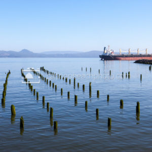 Astoria River Pilings and Cargo Ship