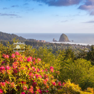 Gorgeous View Overlooking Cannon Beach