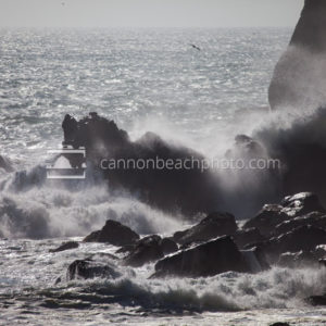 Nehalem Cliffs Wave Crash