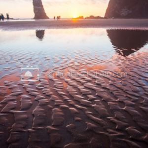Sand Ripples Reflecting the Epic Sky