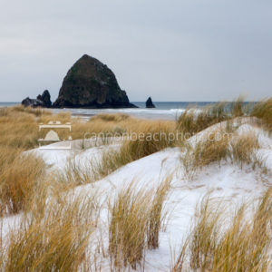 Snow and Dune Grass View of Haystack Rock
