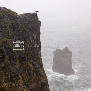Stormy Devil's Cauldron, Oregon Coast, Vertical