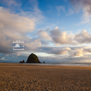 Sunlit Sandy Shore and Haystack Rock, Vertical
