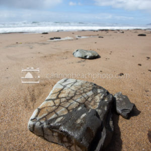 Textured Rock on the Oregon Seashore