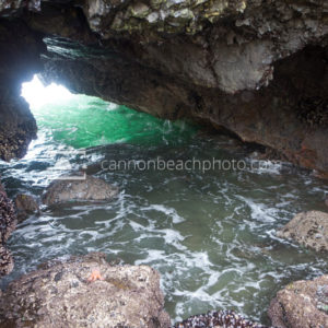 The Cave in Silver Point