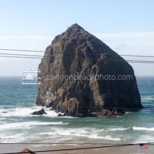 Haystack Rock View with Powerlines