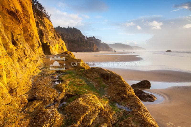 Hug Point Rd Oregon Coast