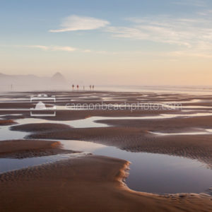 Tide Pools Golden Light in Cannon Beach