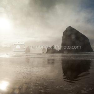 Wet Lens View of Haystack Rock